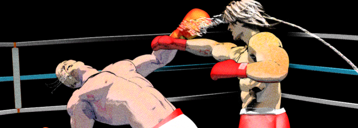 Boxer detail