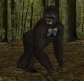 DS3 Gorilla 2 (Bloodsong-Leatham tex)